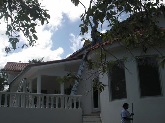 ende-januar-2009-091